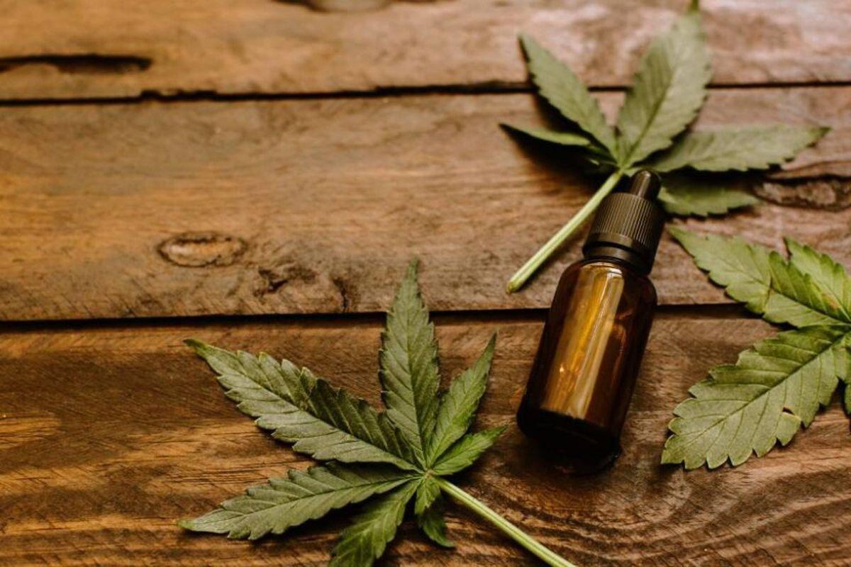 Tras la adhesión a la Ley nacional, buscan conformar el Consejo Asesor que regule el cannabis medicinal en Angostura antes de la Feria Judicial